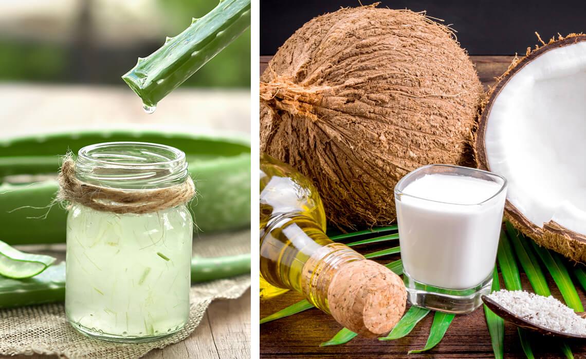 aloe vera and coconut oil
